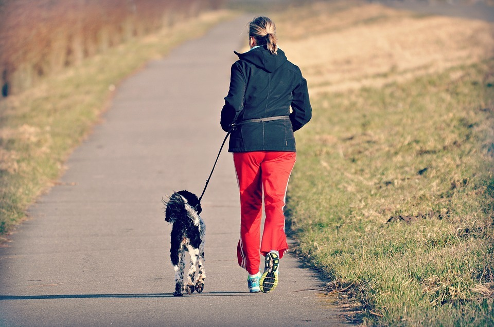 Ways to Include Your Dog in Your Exercise Routine